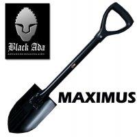 Malý rýček Black Ada Maximus - zapůjčení